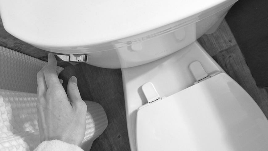 Gratitude: Toilets that flush